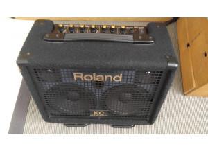 Roland AC-33 (46599)
