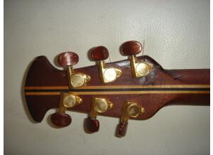 Adamas Guitars CVT