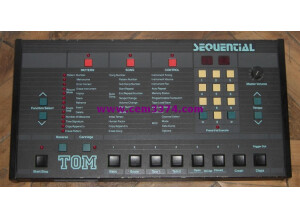 Sequential Circuits TOM (19293)