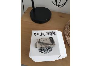 Asyllum Pickups Black Dog
