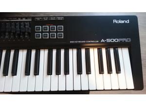 Roland A-500PRO-R