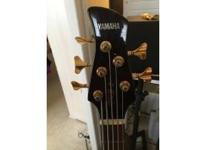 Yamaha TRB5
