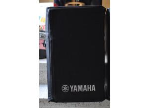 Yamaha DXR10
