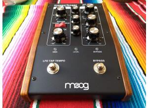 Moog Music MF-108M Cluster Flux