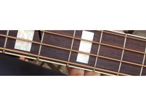 Fender Kingman Bass SCE [2009-2012]