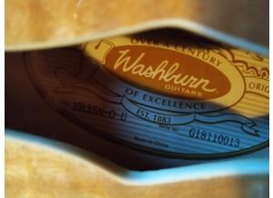 Washburn HB35