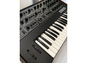 Roland RE-201 Space Echo (81168)