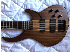 Peavey Grind Bass 5