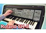 Recherche  Roland SH-5, fonctionnel de préférence