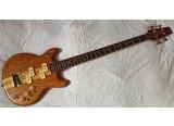 Vantage VA 900 Devil Bass