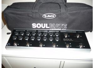 T-Rex Engineering SoulMate