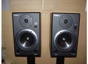 Roland DS-7