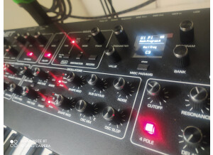 Dave Smith Instruments Prophet REV2 16 voix (99294)