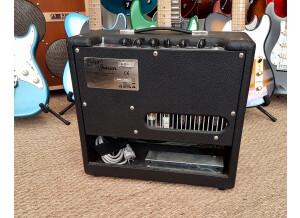 Fender Blues Junior (1656)