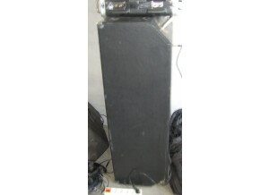 Ampeg SVT-810 Vintage (4446)