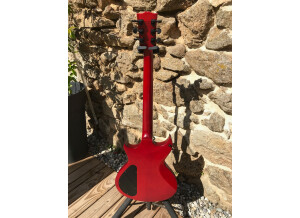 Gibson N-225