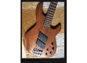 Sandberg (Bass) Panther Special 4