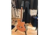 Vends Guitare Godin 12 Cordes Modèle A12