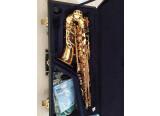 Saxophone Alto Yamaha YAS-875EX Custom