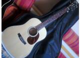 Guitare Cort E 300  SS