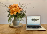 "Apple MacBook Air 13"" i5 bicœur mi 2013"