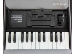 Roland K-25m (95208)