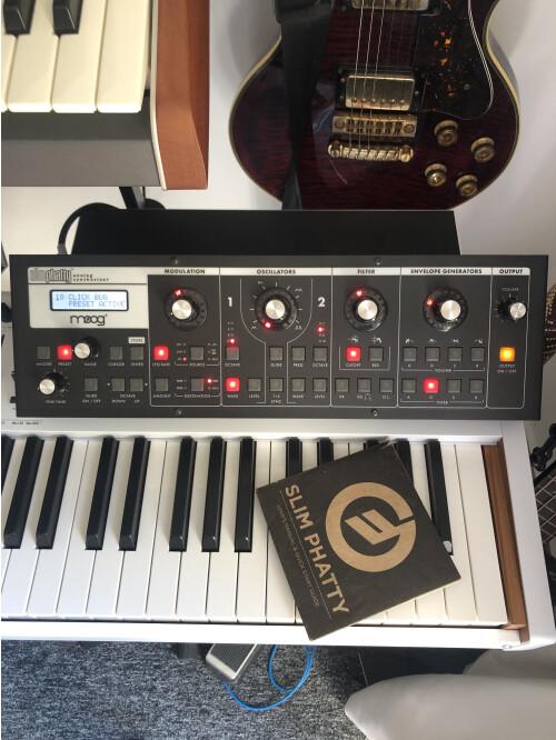 Moog Music SlimPhatty (87081)