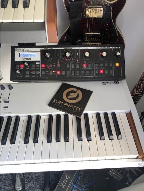 Moog Music SlimPhatty (58085)