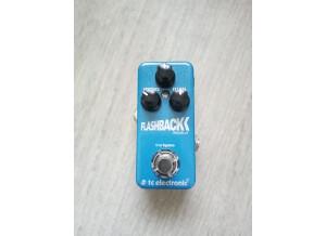 TC Electronic Flashback Mini (79730)
