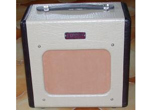 Fender Champion 600 [2007-2012] (21896)