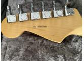 Vends American Professional Stratocaster HH Shawbucker