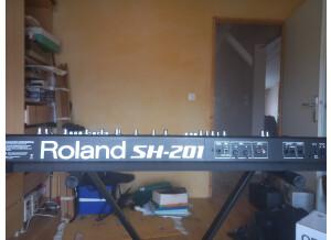 Roland SH-201 (78646)
