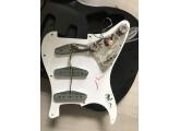 1973 Fender Stratocaster Maple/Black (vidéos)