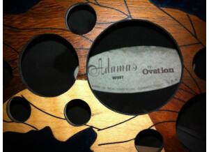 Adamas Guitars W597 CB