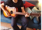 Guitare 12 cordes électro-acoustiques Jim Harley Four Season