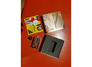 Bare Knuckle Pickups Rebell Yell