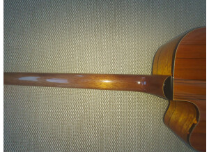 Fender Victor Bailey Acoustic Bass