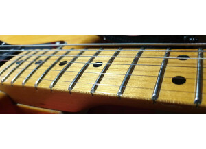 Fender Stratocaster [1965-1984]