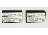 Deux batteries pour Tascam GT-R1 ou DR-1