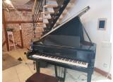 Vends Piano 1/4 queue Petrof P IV