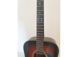 Epiphone FT-200 The Monticello