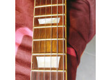 Chevy les paul micros dirty fingers