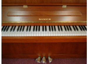 Samick JS 042