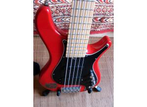 Brubaker Guitars MJX-5 (24799)
