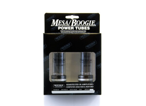 Mesa Boogie EL34 Duet