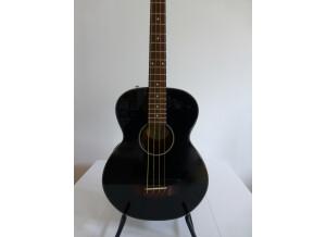 Fender BG-31