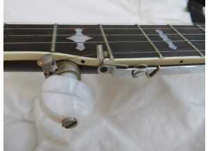 Gibson RB-250