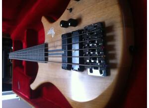 Vigier Passion 5 Strings (82765)