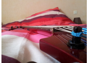 Vigier Passion 5 Strings (7564)