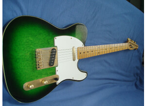Fenix by Young Chang Telecaster